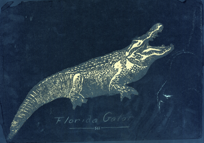 1917-1925 Scrapbook Page from Jackson MacDonald - Florida Gator Sticker