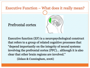 1 JPG Executive Function Deficits and EBD