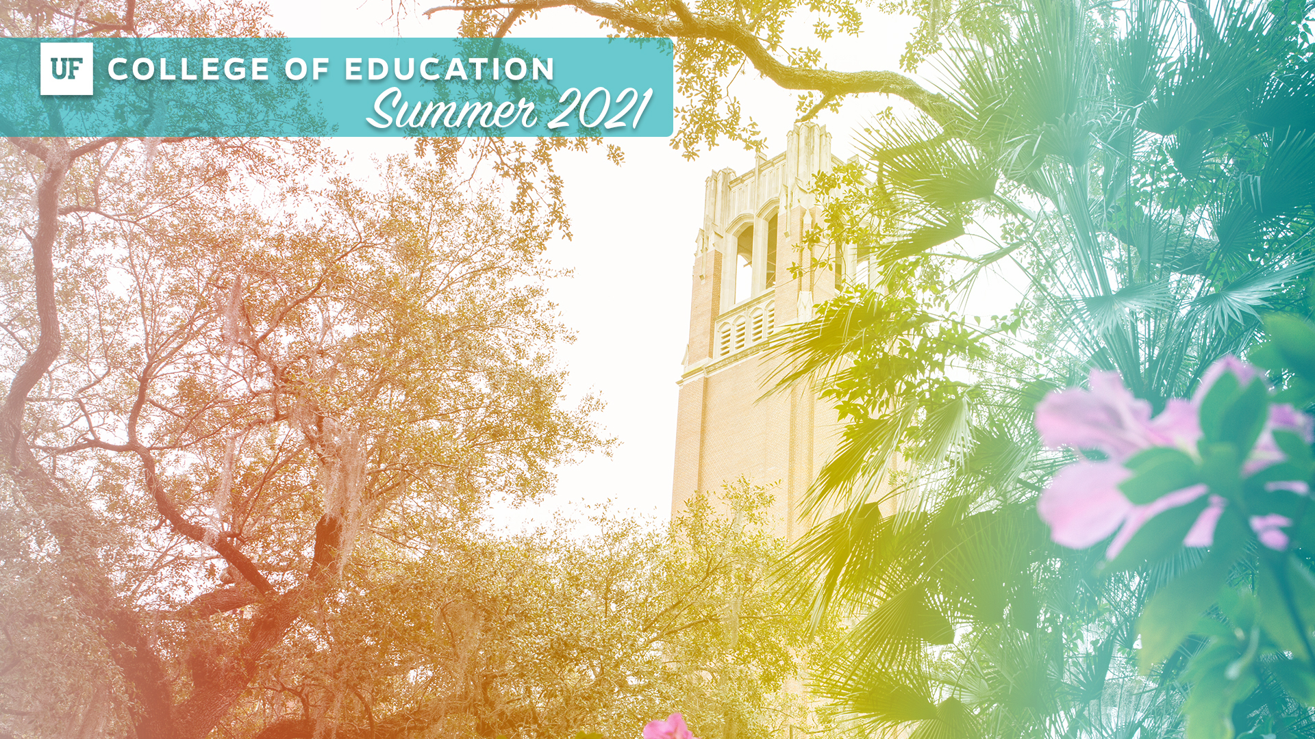 UF College of Education - Zoom Background