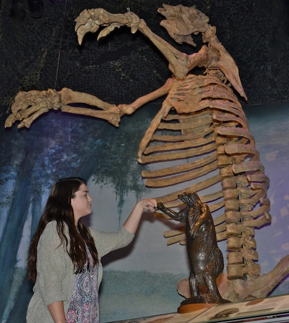 Uf Florida Museum Of Natural History Intern