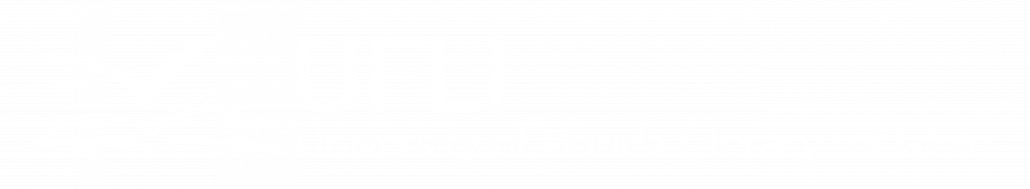 UF Literacy Initiative