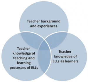 Dimensions of Teacher Practices